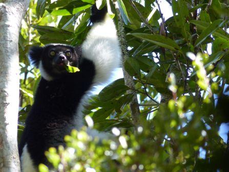 Reisebericht Madagaskar