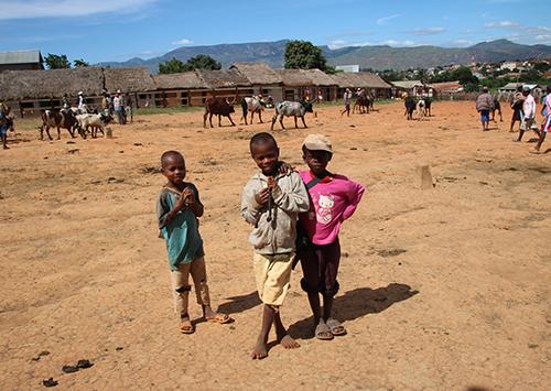 Erfahrungsbericht Madagaskarreisen