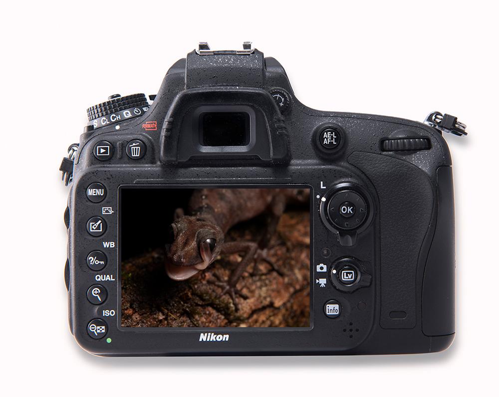 Kamera Paroedura Tanalahorizon