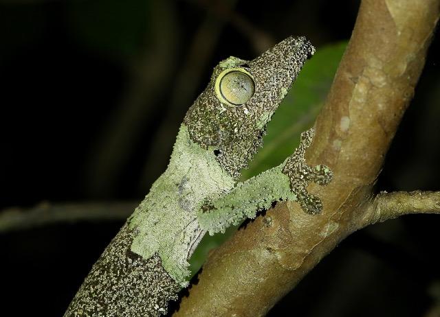 Reiseerfahrung Madagaskar