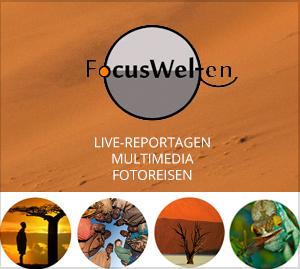 Focuswelten Link